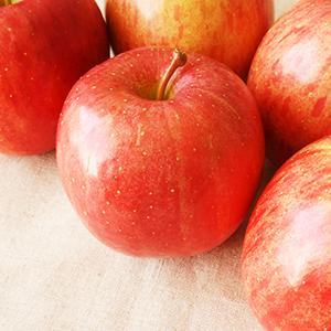 リンゴ幹細胞(リンゴ果実培養細胞エキス) 腐らないと言われる希少なスイス産のリンゴから抽出したエキス